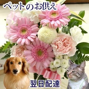 ペットのお供えアレンジメント 即日発送のお供え花 fkjiyugaoka