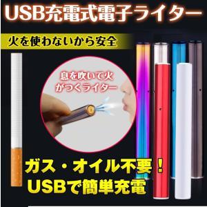 電子ライター USB スティック 息 吹く 点火 USBライター 電熱 充電式 熱線ライター ライター タバコ たばこ 喫煙具 エコグッズ ギフト バレンタイン rt007