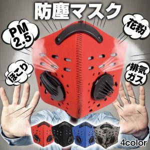 マスク 防塵 フェイスマスク PM2.5 花粉 ほこり 塵 ...
