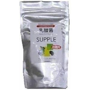 三晃商会 乳酸菌 お徳用 100g (小動物用...の関連商品1