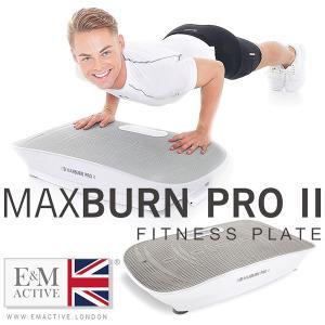 エクササイズマシン E&M MAX BURN PRO II FITNESS PLATE マックスバーン フィットネス プレート プロ 2(bcl)/海外×/メーカー直送|flaner-y