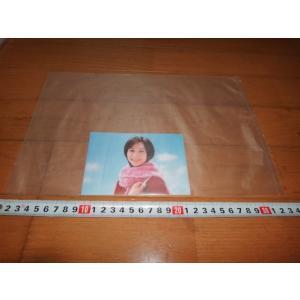 ショーレックス W六つ切り用 写真袋  100枚|flash99