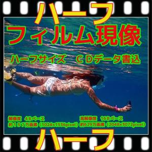 カラーハーフフィルム現像 + CD書込16B + ネガインデックス + CDインデックス|flash99