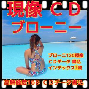 中判カメラ  ブローニーカラーフィルム現像+CD書込(16B)+ネガイン+CDインデ|flash99