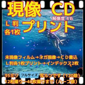 フィルム現像 +L判各1枚プリント+CD書込4Bでデータ保存 +Wインデックス 「写ルンですOK」|flash99