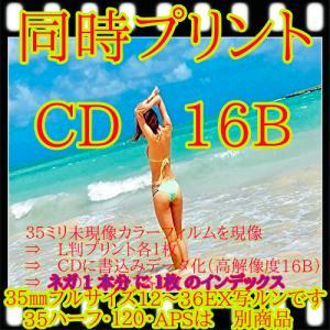 フィルム現像 + プリント + CD書込16B + ネガインデックス + CDインデックス|flash99