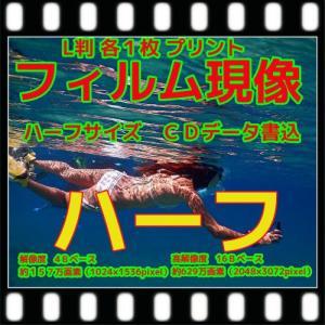 ハーフ フィルム現像 + プリント + CD書込 + ネガインデックス + CDインデックス|flash99