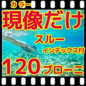 中判カメラ ブローニーフィルム現像+インデックス  フジカラー薬品|flash99