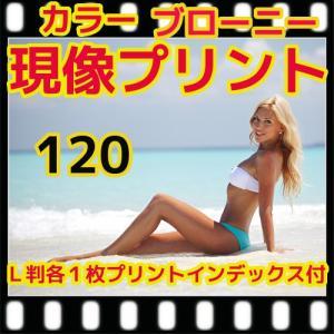 中判カメラ ブローニーカラーフィルム現像+プリント+インデックス 、フジカラー薬品|flash99
