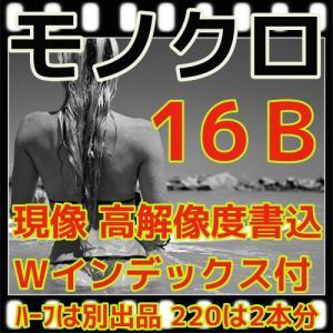 モノクロフィルム現像 + CD書込(16B)+Wインデックス 最短2日|flash99
