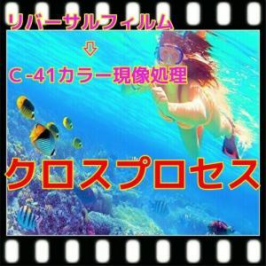 ハーフ・クロスプロセス現像+プリントCDつき(16B)|flash99