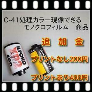 追加精算金商品   200円|flash99