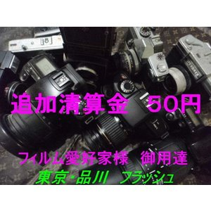 追加精算金商品 50円|flash99