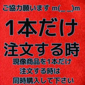 1本注文 追加金  カラーフィルム現像CD付商品 限定|flash99