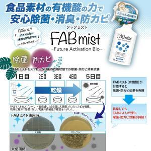 除菌スプレー 発酵アルコール マスク・衣類・車内・ペット 室内の除菌・消臭・防カビ FABミスト 300ml|flavorgift|02