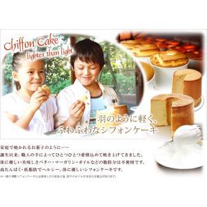 フレイバー シフォンケーキ チョコレート ミドルサイズ ご自宅用|flavoryuji|04