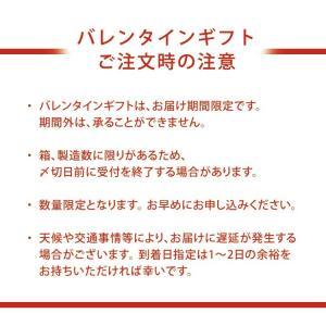 チョコバナナ シフォンケーキ 期間限定 ご自宅用 ミドルサイズ 直径16cm|flavoryuji|04