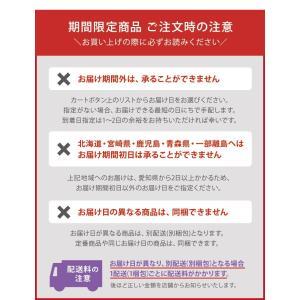 チョコバナナ シフォンケーキ 期間限定 ご自宅用 ミドルサイズ 直径16cm|flavoryuji|05