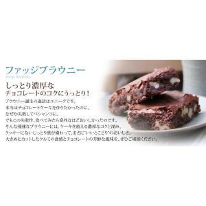 ファッジブラウニー 12個入 フレイバー デパ地下 スイーツ 洋菓子 フレーバー 焼菓子 チョコレート クルミ ナッツ ギフト 誕生日プレゼント|flavoryuji|02