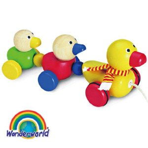 正規品 木のおもちゃ wonderworld(ワンダーワールド) ダック・ファミリー|flclover