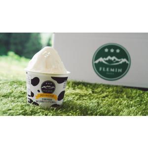 フレミンジェラート/新潟県 魚沼乳のアイスクリーム「クリームミルク」カップアイス単品 (110mlカップ×1個) flemin-spg