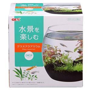 ジェックス グラスアクアリウム ドロップ 水草インテリア ガラス製