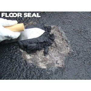 【送料無料】【動画あり】アスファルト補修材 段差補修 穴補修 エポキシ樹脂 ベースブラック 10kg(5kg×2) floor-seal