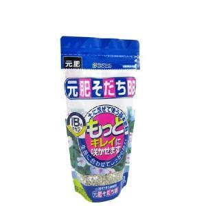 資 元肥そだちBB 320g|flower-net