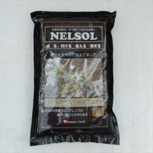 資 水で練って固まる土 ネルソル 1L 多肉植物 壁面 売れ筋|flower-net