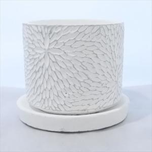 資 CD036-105 ペイントホワイト 陶器 鉢 植木鉢 和風 インテリア 多肉植物 おしゃれ|flower-net