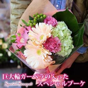 花 ギフト 巨大輪ガーベラの入ったスペシャルブーケ 花 贈り物 プレゼント 送料無料|flower
