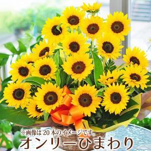 父の日 プレゼント 父の日 花 ひまわり 父の日ギフト 花 プレゼント ギフト ひまわり オンリーひまわりアレンジメント ヒマワリ 向日葵 10本以上からご注文可能|flower