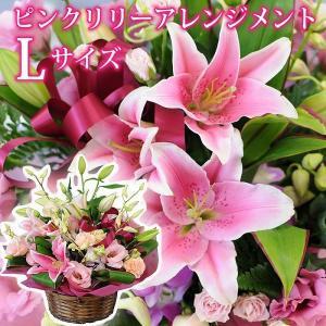 花 ギフト 誕生日の花 ピンク 百合 ユリ ゆり アレンジメント ピンクリリー2L 翌日配達|flower