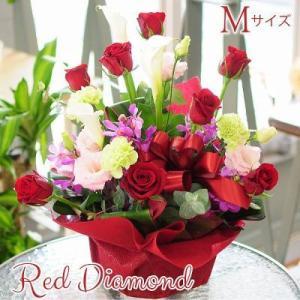 誕生日ギフト 赤いバラ  生花 アレンジメント レッドダイヤモンド Mサイズ バラプレゼント|flower