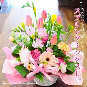 スプリングミックス Lサイズ チューリップアレンジメント 春のアレンジメント 誕生日の花 バレンタイ...