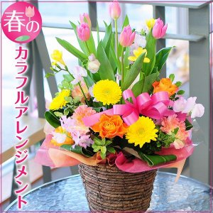 春のカラフルアレンジメント アレンジメント  誕生日の花|flower