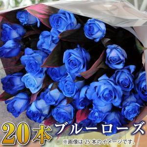 バラ 花束 青 薔薇 青いバラ20本花束  誕生日花ギフト ブルーローズ プレゼント ホワイトデー|flower