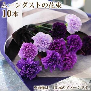 ムーンダスト 花束 青いカーネーション 誕生日 年の数 花ギフト ムーンダストの10本花束 送料無料|flower
