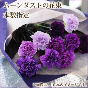 ムーンダスト 花束 青いカーネーション 本数指定 誕生日 年の数 花ギフト ムーンダストの花束 8本以上からの注文受付です|flower