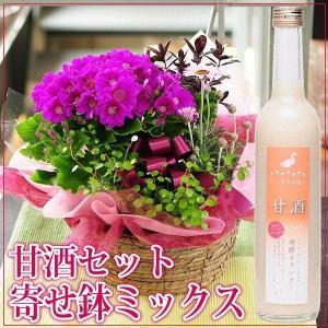 おまかせ寄せ鉢ミックス 甘酒セット ギフトプレゼント 送料無料 お花 贈る 鉢植え お花配達 お花宅配 お花ギフト|flower