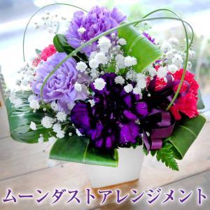 ギフト 花  花贈る プレゼント 贈り物 ムーンダストアレンジメント 送料無料|flower