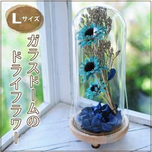 花 ギフト ガラスドームのドライフラワー Lサイズ|flower