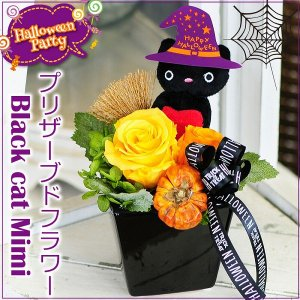 ハロウィーン限定 黒ネコのミミちゃん プリザーブドフラワー アレンジメント ハロウィン Halloween ギフト プレゼント|flower