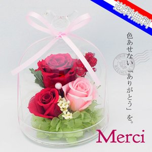 花 ギフト プレゼント 数量限定 プリザーブドフラワー 敬老 花 枯れない ドーム型 メルシー|flower