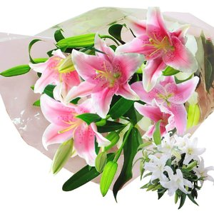 母の日2019 花束 産地直送 百合15輪の花束 プレゼント 花束ギフト ゆりの花 束 百合  送料無料|flower