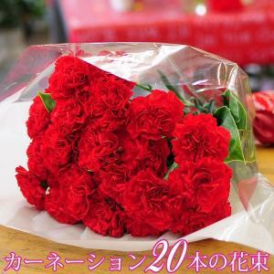 花束 赤いカーネーション ギフト 極上の赤いカーネーション20本の花束