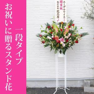 スタンド花 お祝い用  1段タイプ 開店祝い 開業祝い 開院祝い|flower