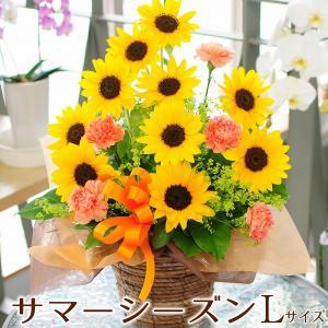 父の日 プレゼント 父の日 花 ひまわり 父の日ギフト 花 プレゼント アレンジメント ひまわり 花 サマーシーズン Lサイズ ヒマワリ 向日葵|flower