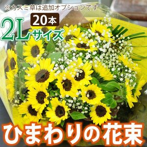 花 ギフト ひまわりの花束  ヒマワリ 向日葵 2Lサイズ|flower