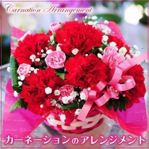 母の日2019 花 カーネーションのアレンジメント ギフト 送料無料|flower